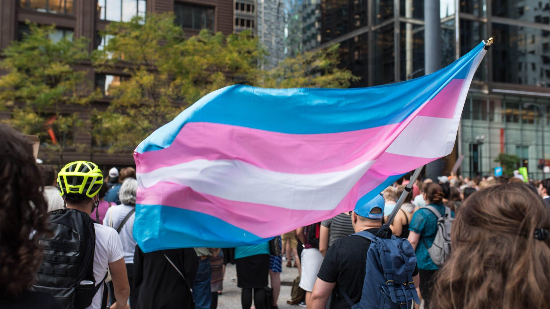 Ley del colectivo Trans en una manifestación