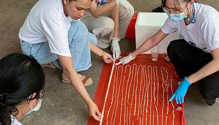 Un parásito estomacal de casi 60 pies de largo salió de un paciente en Tailandia